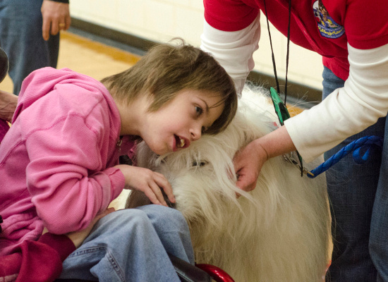 Kaelee Puribraski, 10, of Bay City, snuggles therapy dog Jeronimo, a great Pyrenees/sheepdog mix during the 20 Minutes a Day reading program at T. L. Handy Middle School in Bay City on Saturday, March 22. The dogs come to local libraries about once a month for kids to read to them. (Danielle McGrew | The Bay City Times)