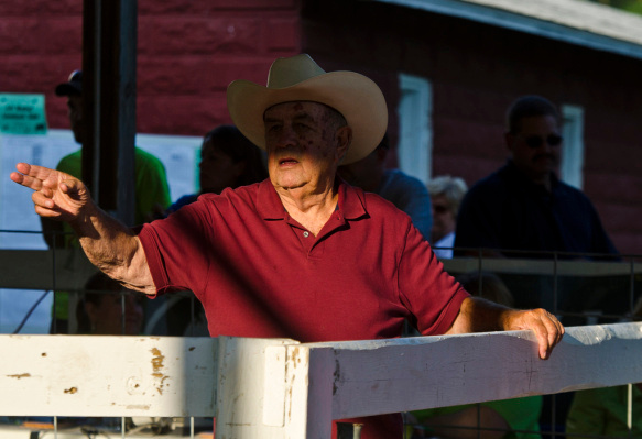 Dick Bayne of Henderson spots bidders during the Bay County 4-H Livestock Auction on Thurs., Aug. 7, at the Bay County Fairgrounds in Bay City. Bayne has been volunteering his services at the annual event for 22 years. (Danielle McGrew | for the Bay City Times)